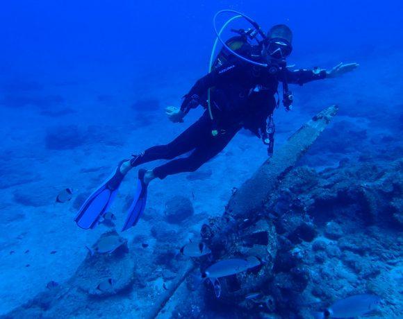 PLEORA Diving site